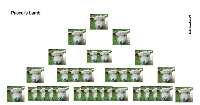 Lambs, following the pattern of Pascal's Triangle